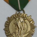 1916 Rising survivors medal obverse