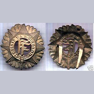 Irish Army Vickers Helmet Badge