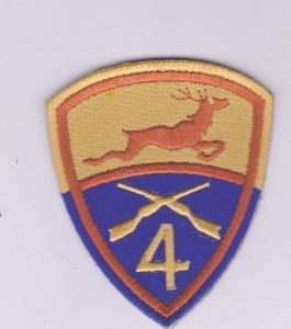 4th infantry battalion irish army
