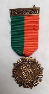 1916 Rising medal 11