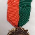 1916 rising medal 2
