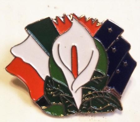 1916 rising badge IRA